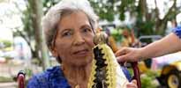 i7 Notícias - Marcimiria Cecilia da Silva Bibiano - 88 anos