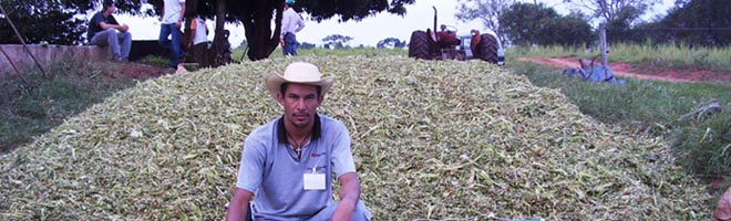 Alunos da ESAPP/FUNGE unem prática e teoria com curso de silagem de milho oferecido pelo SENAR
