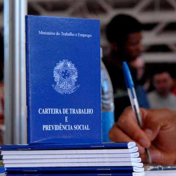 Agroterenas divulga nova vaga de emprego para a unidade de Maracaí