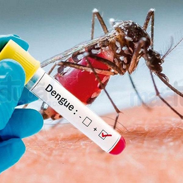 Maracaí registra 60 casos de dengue só em janeiro e preocupa autoridades