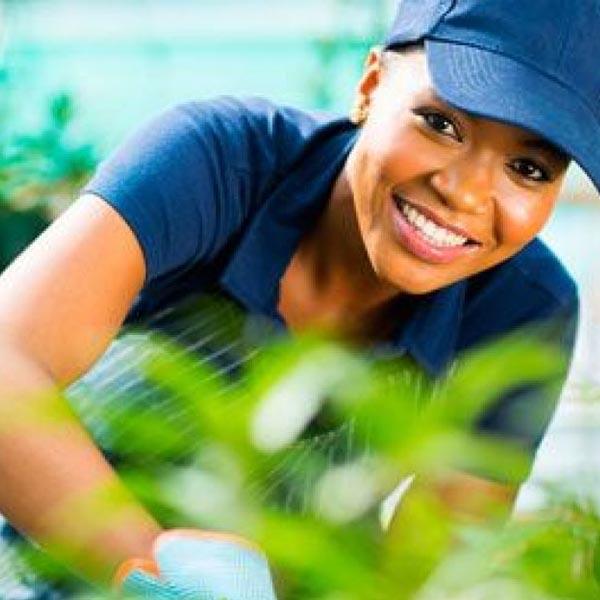 Cinco cursos gratuitos estão com as inscrições abertas no Sindicato Rural Patronal