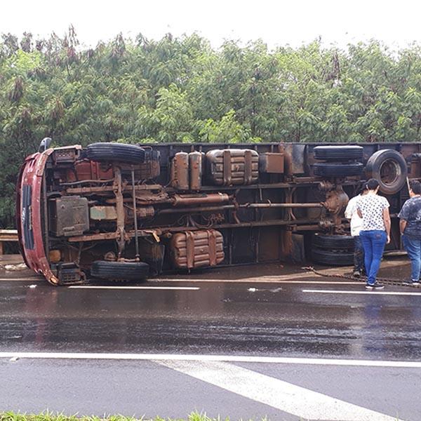 Caminhão carregado com mais de 30 bezerros tomba em rodovia de Paraguaçu