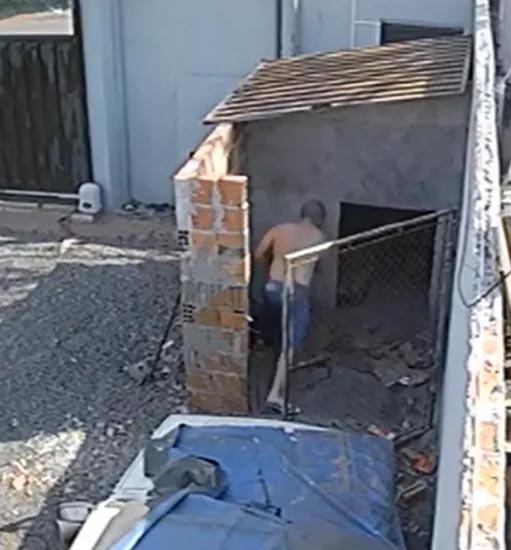 Pit bull é morto a tijoladas após pular muro e brigar com cachorro do vizinho em Assis
