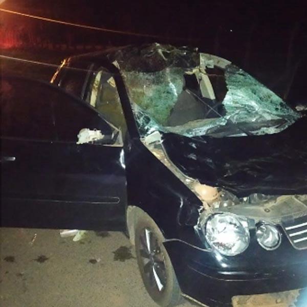 Cavalo na pista causa grave acidente em Paraguaçu Paulista