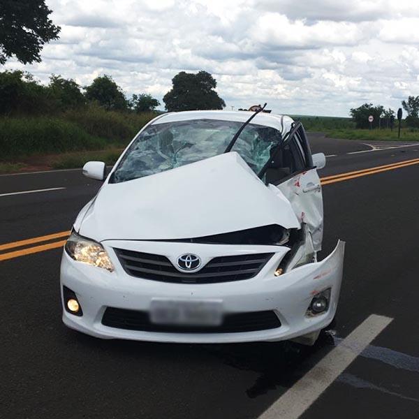 Carro e caminhão se envolvem em acidente na rodovia Paraguaçu/Assis