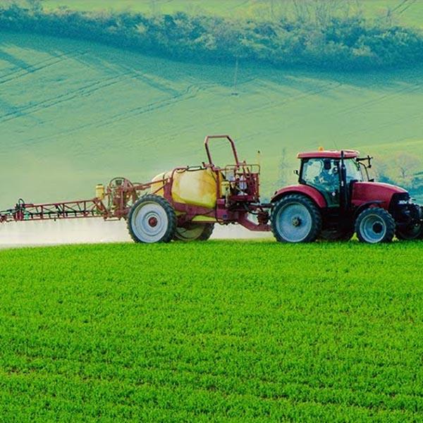Sindicato Rural Patronal divulga cursos gratuitos
