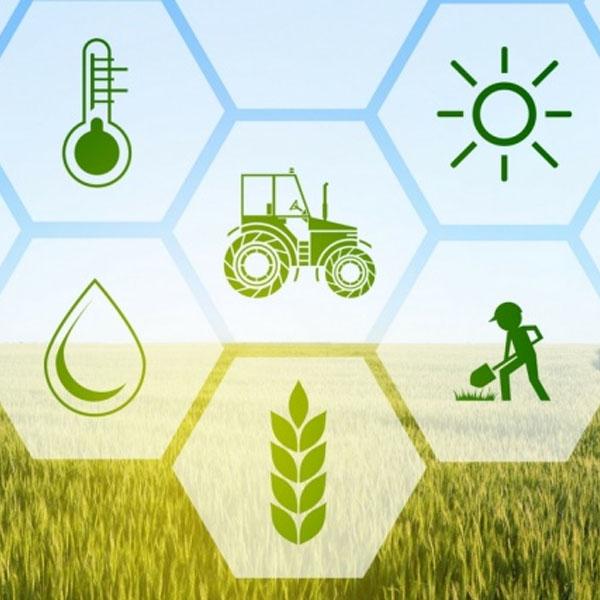 Vários cursos gratuitos estão com inscrições abertas no Sindicato Rural Patronal