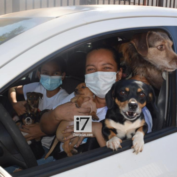 Carreata é realizada para conscientizar população sobre os direitos dos animais