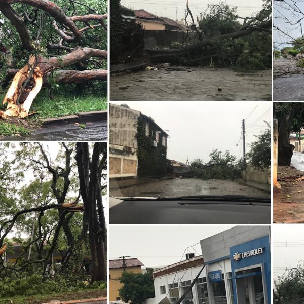Paraguaçu sofre com estragos causados pelo temporal que registrou ventos de mais de 60 km/h